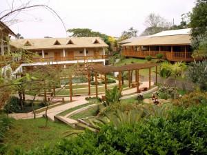 O Centro de Treinamento de Cotia oferece o contato com a natureza