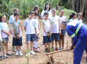 Alunos aprenderam a plantar mudas no viveiro municipal de Goiânia